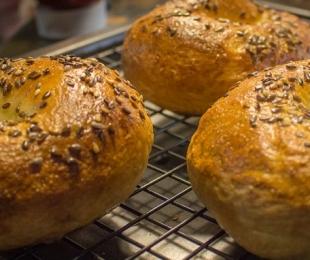 Pão em forma de rosquinha? Conheça o Bagel!
